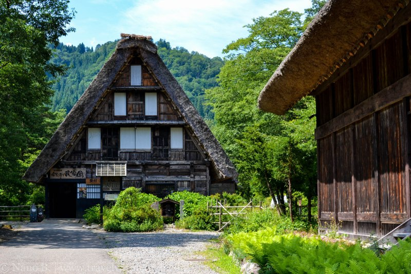 shirakawago-japan-6