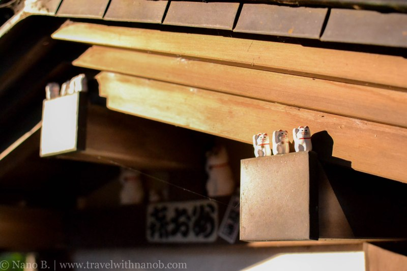 gotokuji-temple-tokyo-18