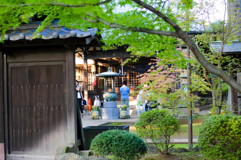 gotokuji-temple-tokyo-22