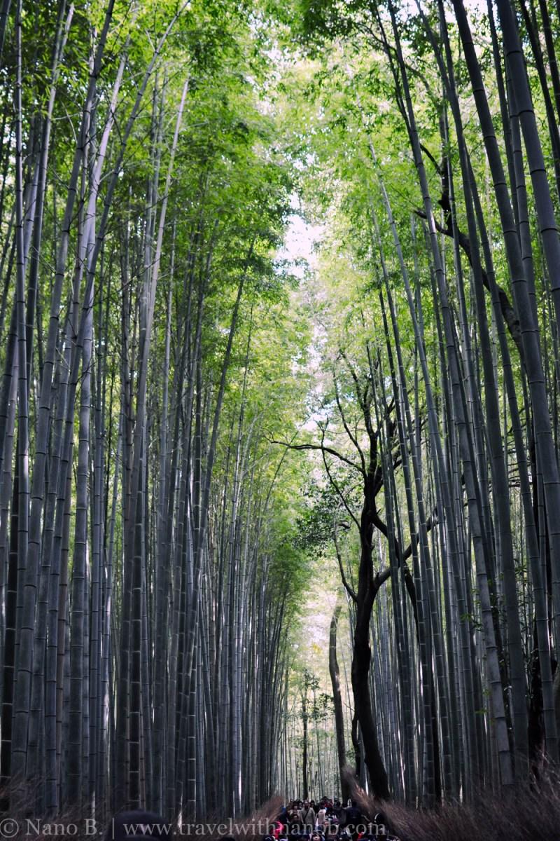 arashiyama-kyoto-29