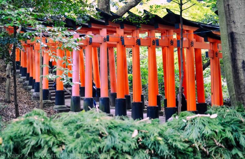 fushimi-inari-taisha-kyoto-14