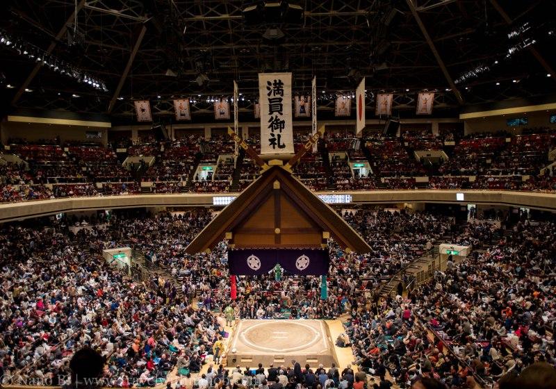 sumo-in-tokyo-16