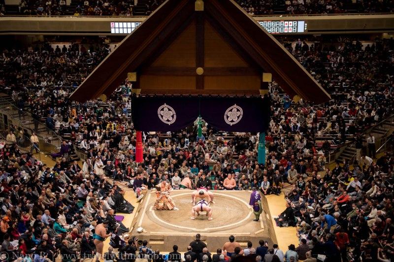 sumo-in-tokyo-20