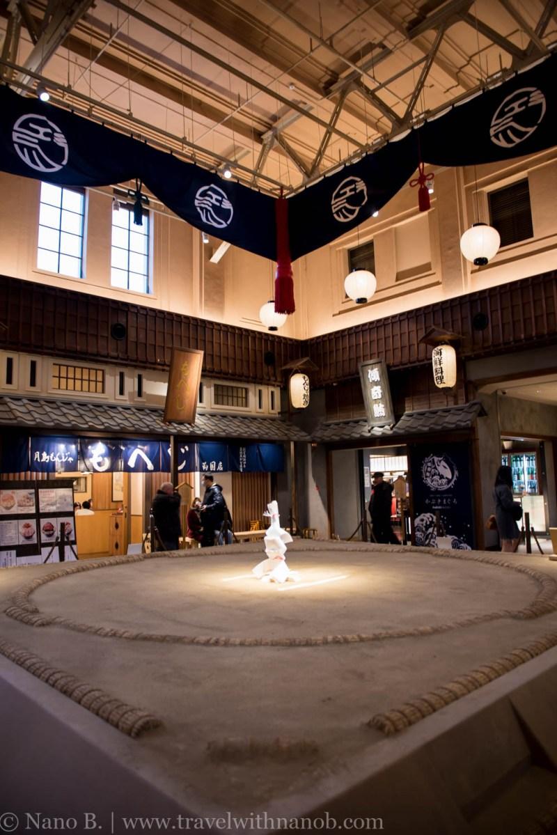 sumo-in-tokyo-9