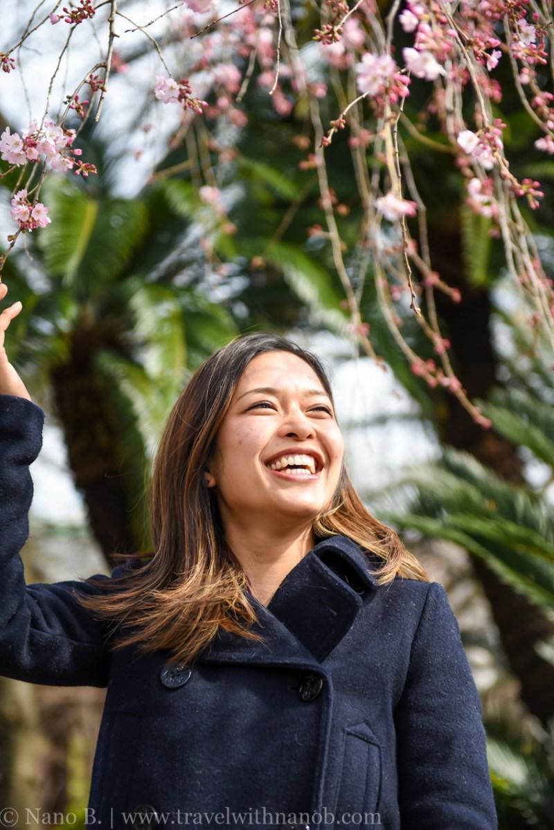 cherry-blossom-tokyo-28