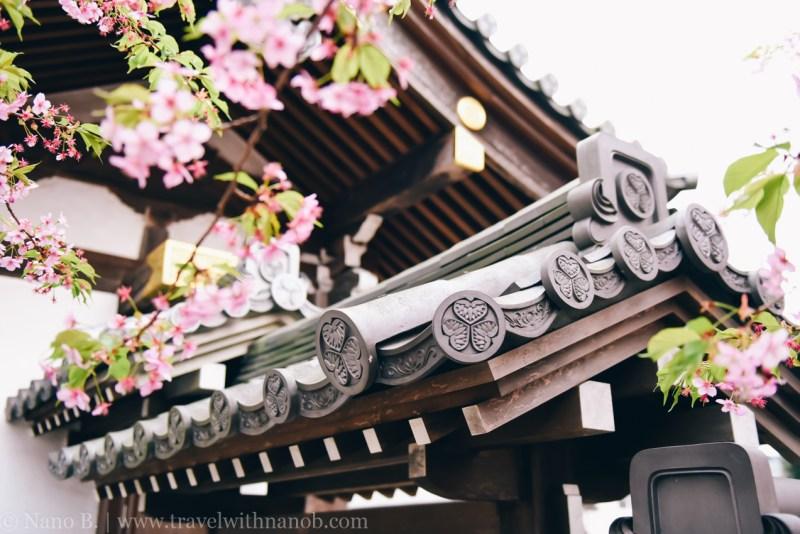 tokyo-shrines-53