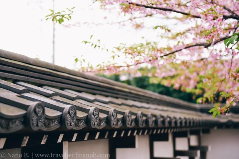 tokyo-shrines-54