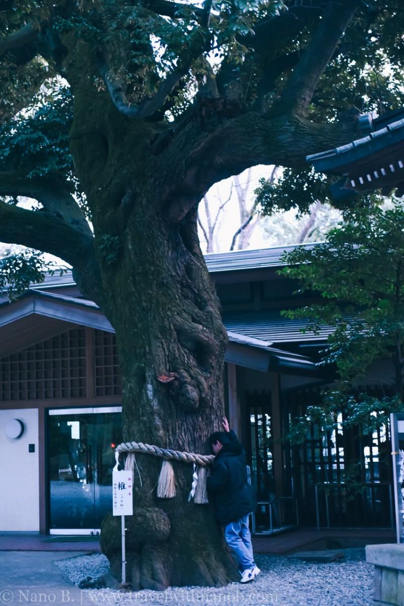 tokyo-shrines-62