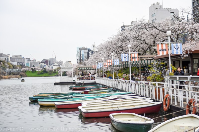canal-cafe-tokyo-11