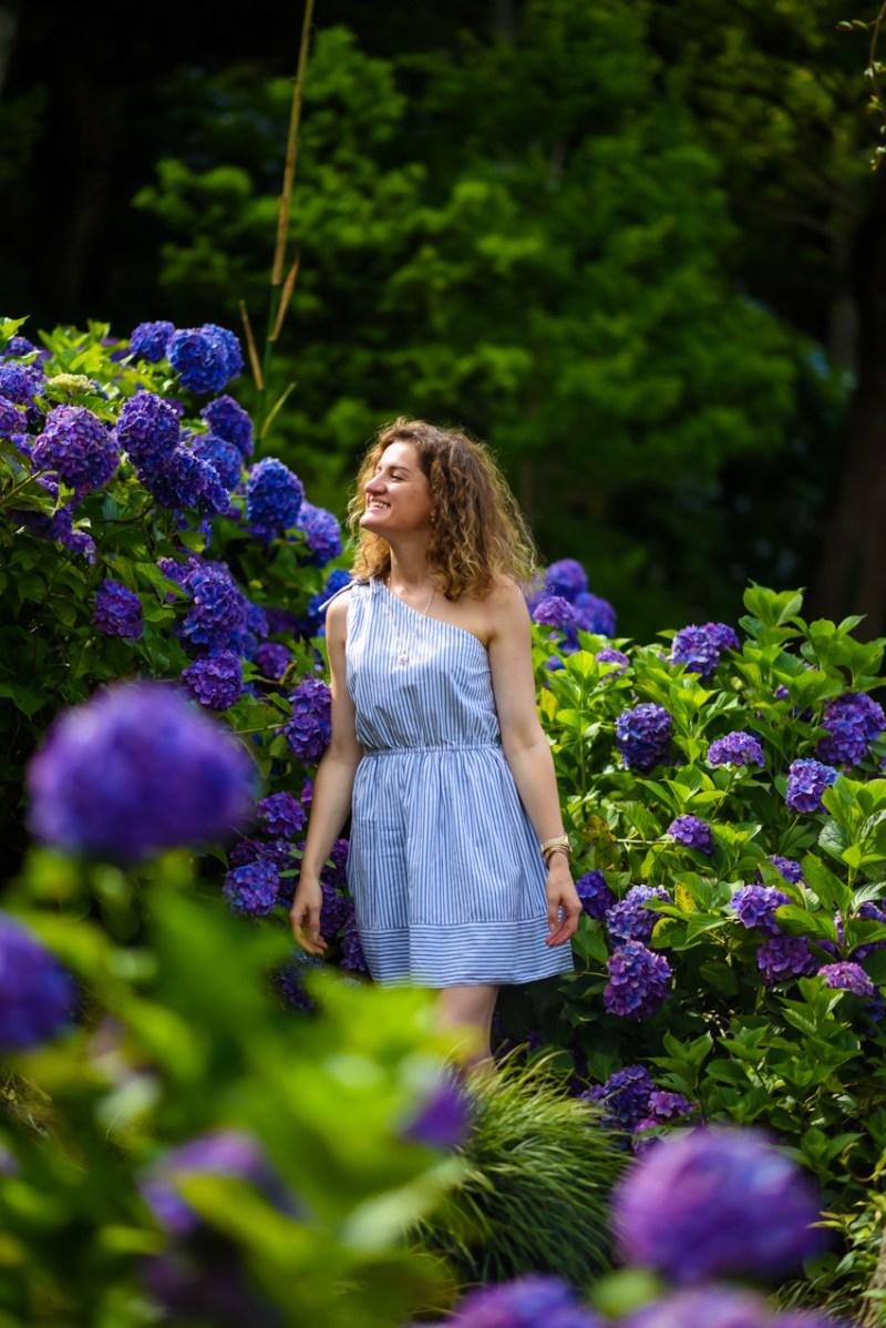 chiba-hydrangea-garden-4