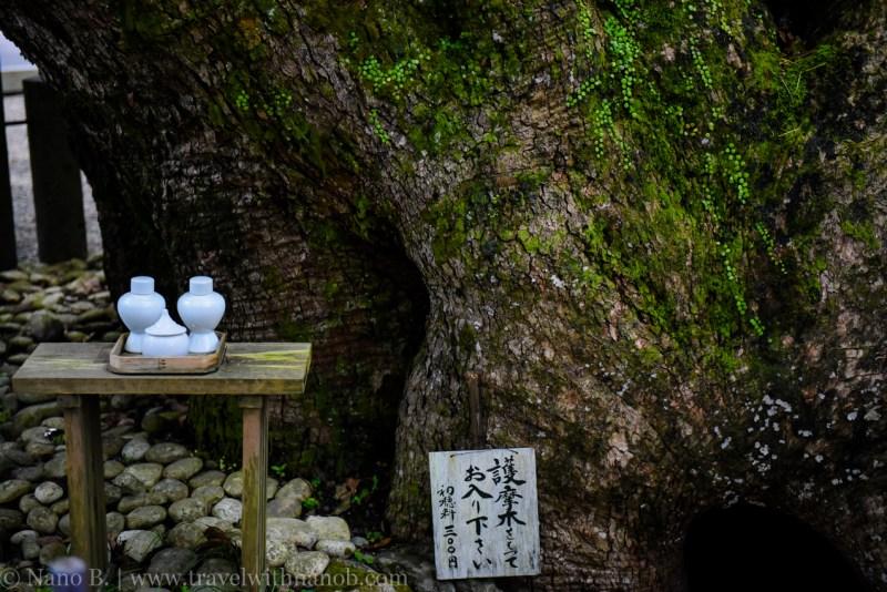 nachi-falls-wakayama-16