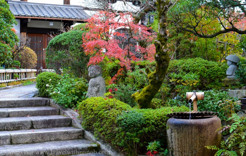 kyoto-autumn-leaves-71