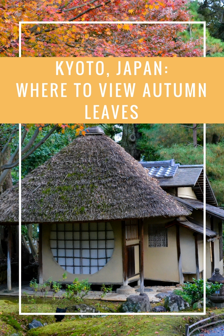 Viewing Kyoto Autumn Leaves www.travelwithnanob.com