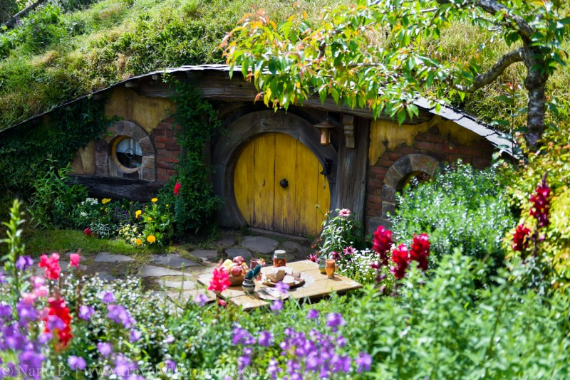 hobbiton-tour-auckland-new-zealand-11