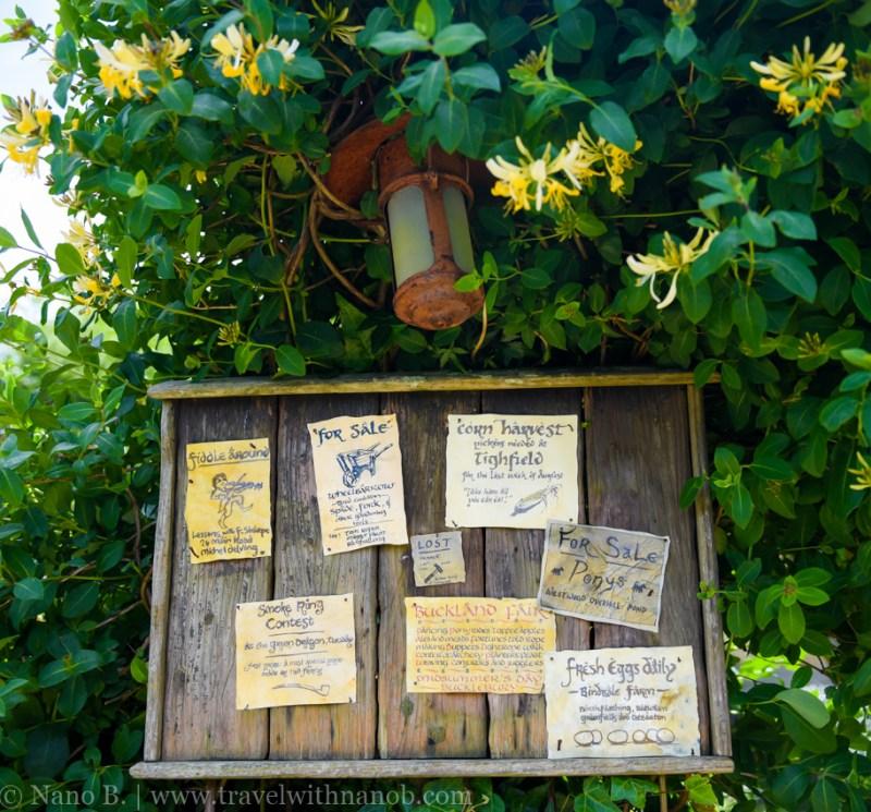 hobbiton-tour-auckland-new-zealand-41