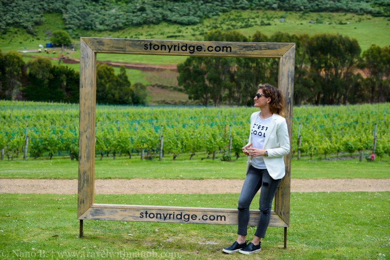 waiheke-island-wine-tour-13