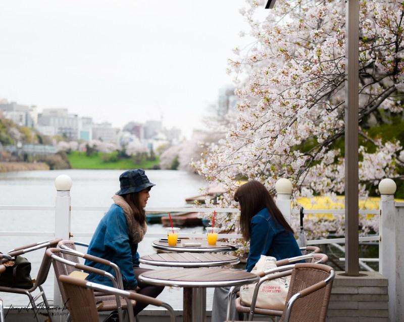 tokyo-best-cherry-blossom-spots-30