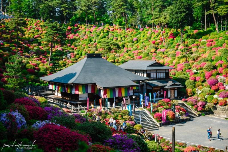 azalea-garden-shiofune-kannon-ji-temple-44