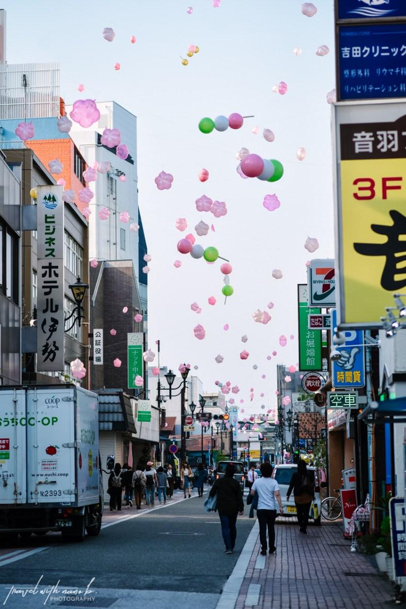 cherry-blossoms-odawara-2