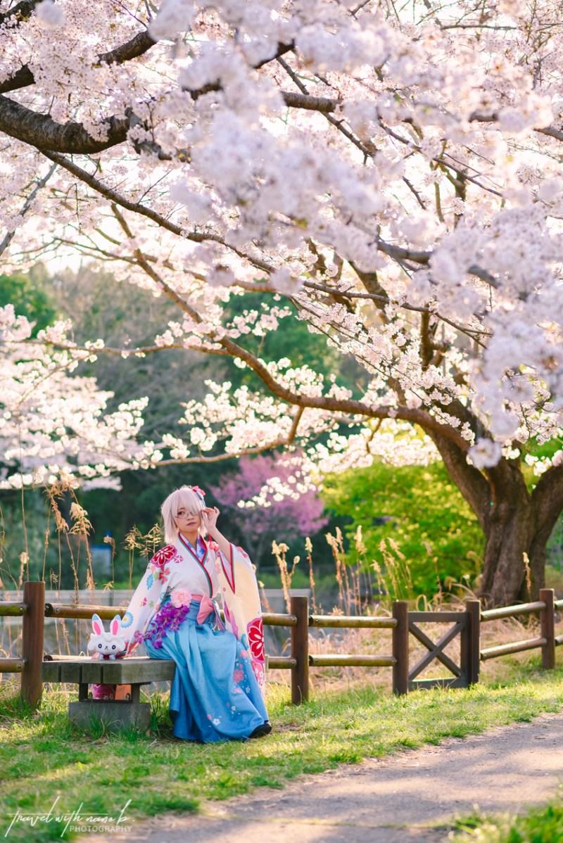 cherry-blossoms-tokyo-31