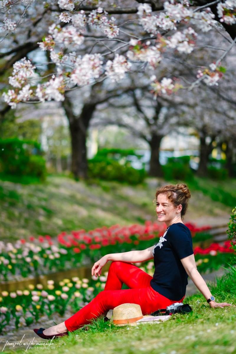 cherry-blossoms-yokohama-9