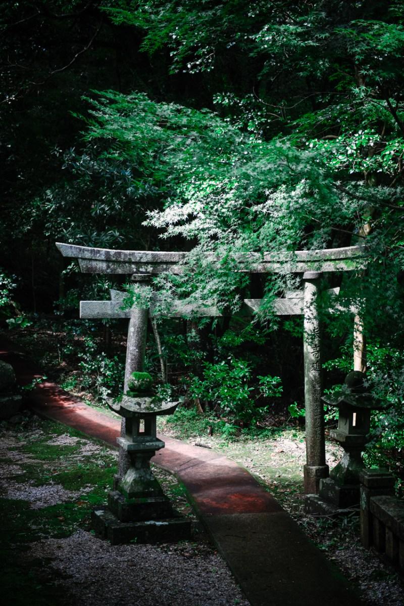 visit-kochi-prefecture-shikoku-japan-30