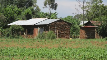 Photo of mud home in field.