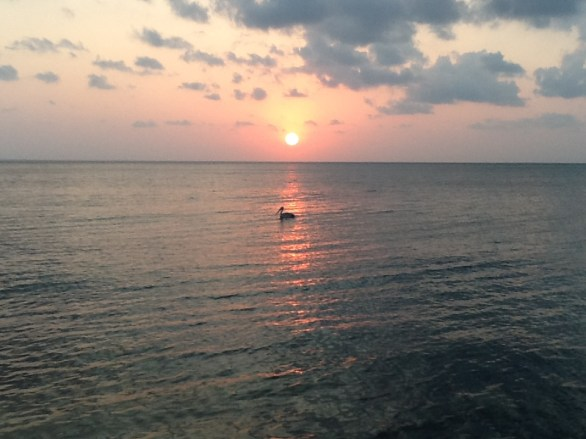 Sunset on a Mozambique beach with pelican on the horizon