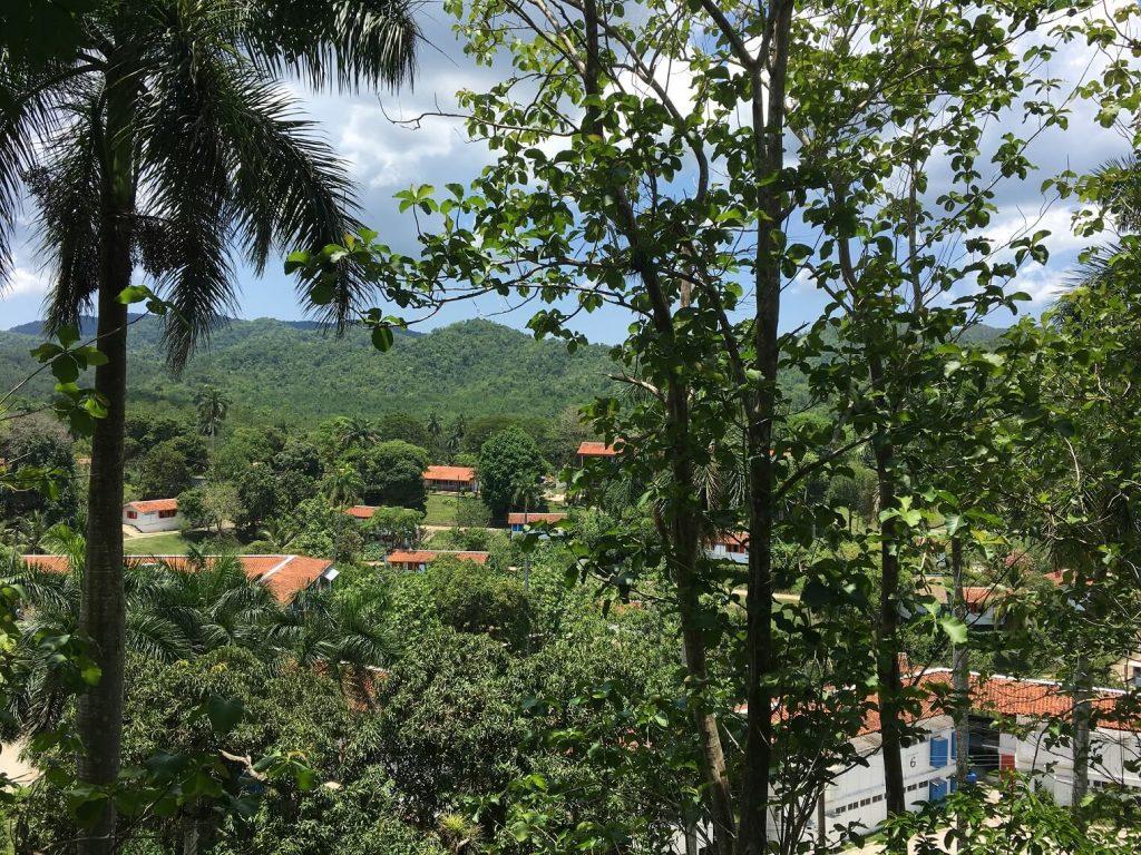 Beautiful forest view of Las Terrazas, Cuba from the Hotel Moka balcony