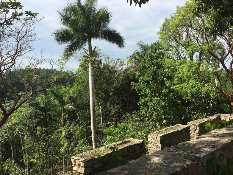 Las Terrazas, Artemisa, Cuba, abandoned, French coffee plantation,