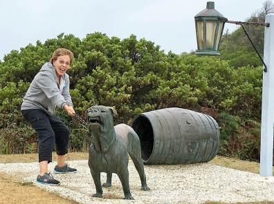Discover Tasmania. Guard dogs in Tasmania