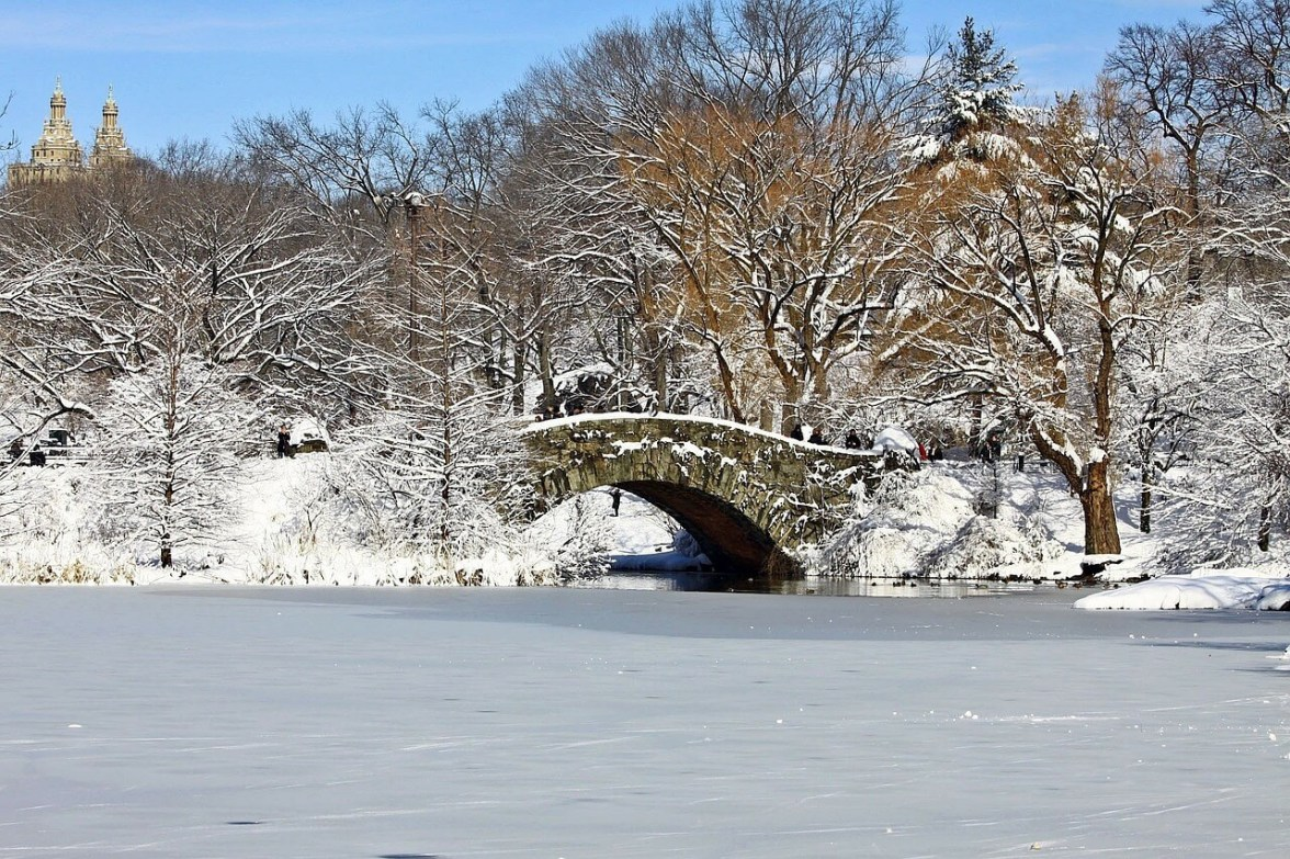 New york city awesome activities you can 39 t do anywhere else for New york winter things to do