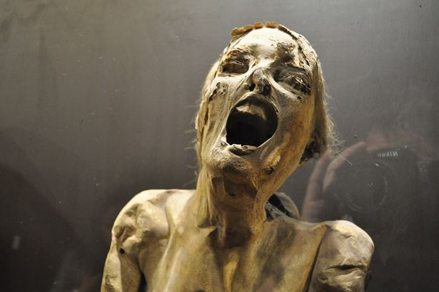 One of the mummies of Guajajuato