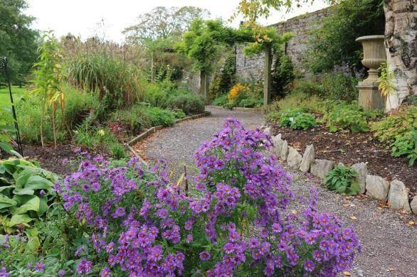 Irish gardens will make you fall in love with Ireland