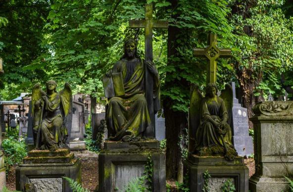 Olšany Cemetery f