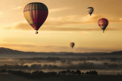 6 GREAT WINE REGIONS OF AUSTRALIA, NEW ZEALAND AND SOUTH AFRICA
