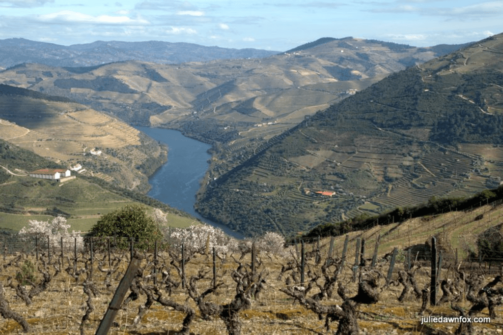 Douro River Valley, one of the best European wine regions