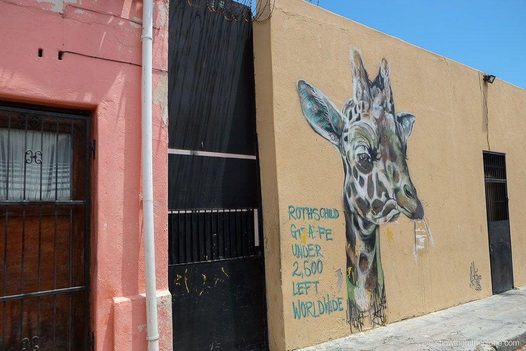 Woodstock, Cape Town Amazing Street Art