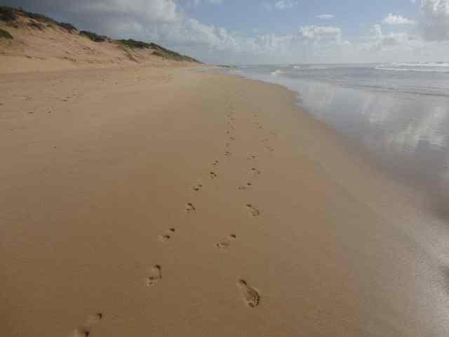 St Simons Island, King and Prince Resort, footprints, green