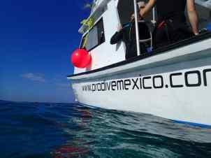Pro-Dive Mexico boat