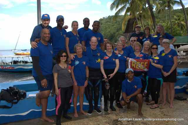 REEF Survey Team 2015 St Lucia