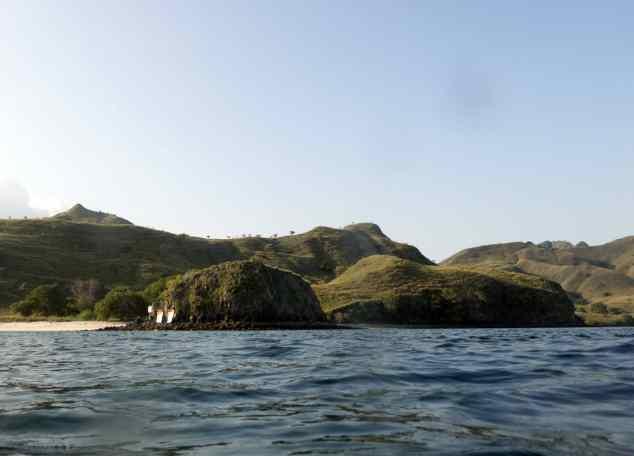 Pink Beach, Scuba, Dive Trip, empty nest