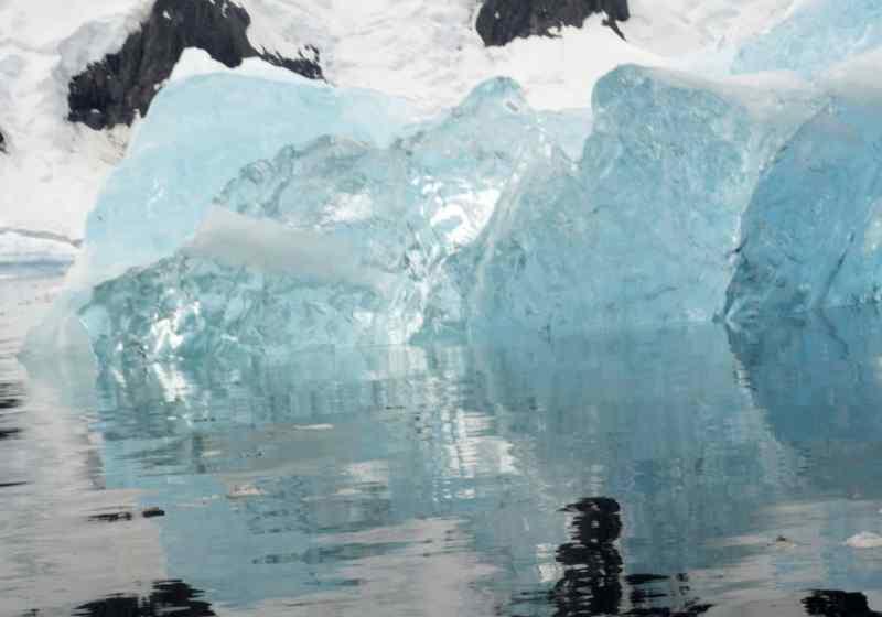 antarctica, penguins, iceberg