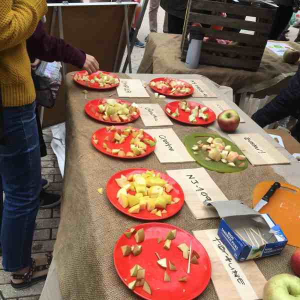 Ithaca Apple Festival