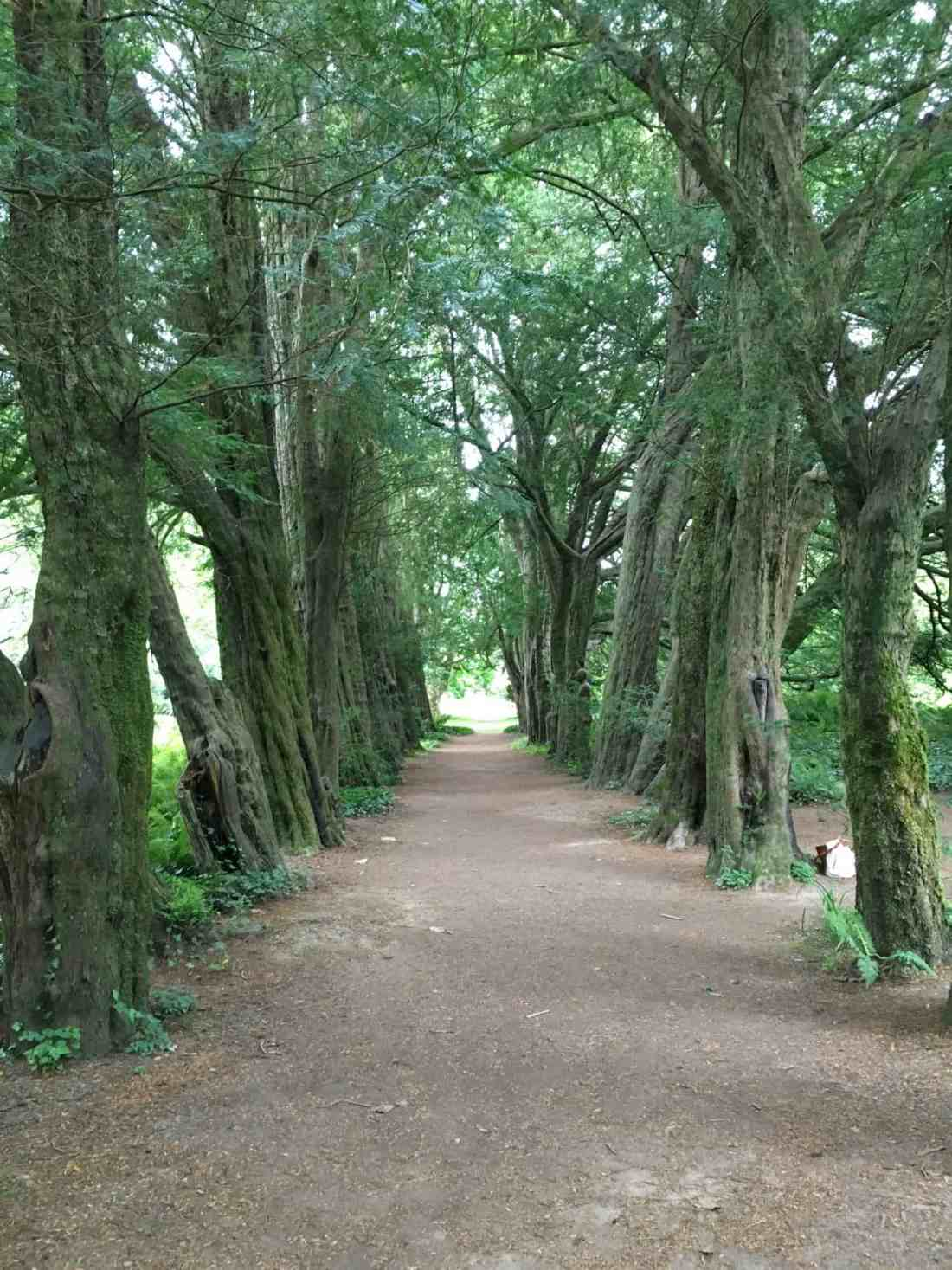 Lismore gardens Ireland