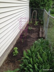 garden is planted!!