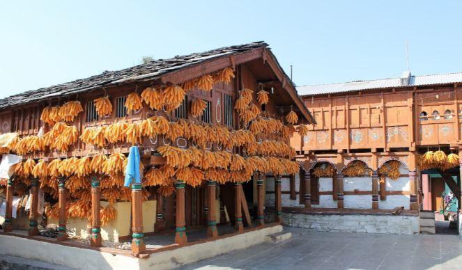 Corn Village Landour