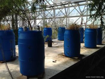 biosphere experiment