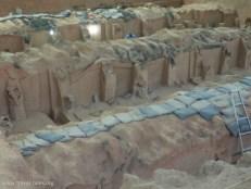 Xi'an 254 Terracotta warriors