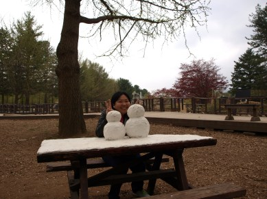 The Snowmen on the Picnic table